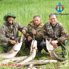 рыболовный тур алтайский край
